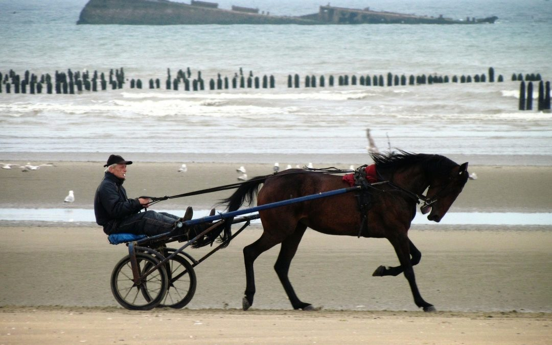 Vacances en famille en Normandie