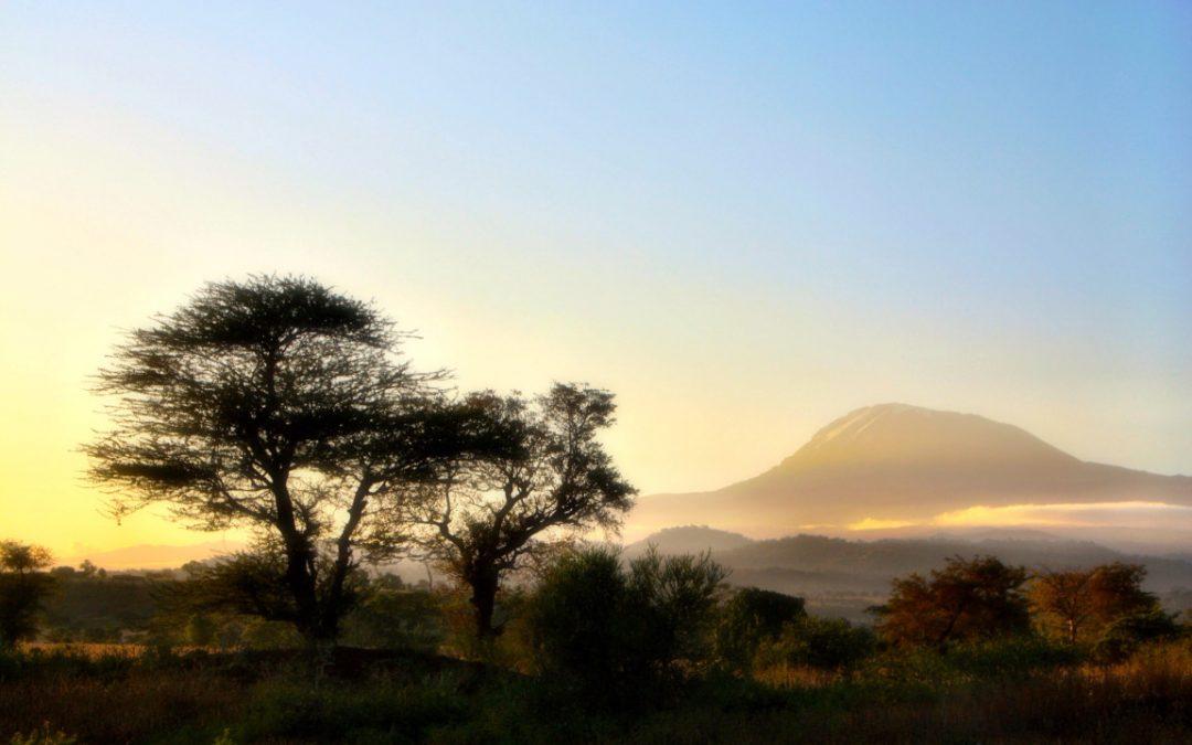 Organiser un petit séjour en Tanzanie.