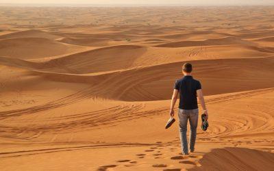 Comment bien organiser son séjour à Dubaï ?