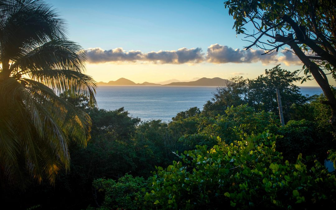 Visiter la Guadeloupe en quelques jours
